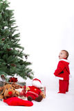 Santa Baby boy standing next to Christmas tree. Fascinated Santa Baby boy standing next to Christmas tree. Studio shoot on white background Royalty Free Stock Photography