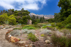 Santa Barbara Botanic Garden Stock Photos