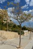 Santa Barbara fortress in Alicante Stock Photo