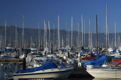 Santa Barbara Marina. The many boats of the marina in Santa Barbara, California Royalty Free Stock Image