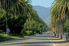 Santa Barbara Road. Santa Barbara, California - Palm Trees Road royalty free stock image