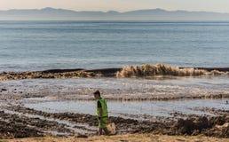Young man searches debris in dumped dirt, Santa Barbara. Santa Barbara, United States - Febriary 16, 2018: Young man searches debris in off-flooding dirt from stock image