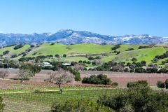 Santa Barbara Wine Area Image stock
