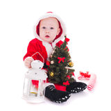 Santa boy. Little Santa boy with lantern and christmas tree isolated on white background Royalty Free Stock Photo