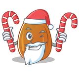 Santa with candy almond nut character cartoon Royalty Free Stock Images