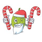 Santa with candy gooseberry mascot cartoon style. Vector illustration Stock Photo