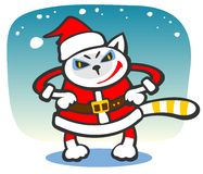 Santa cat Royalty Free Stock Photos