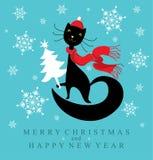 Santa Cat. Royalty Free Stock Photos