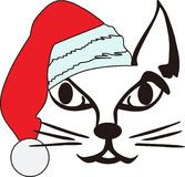 Santa Cat Stock Photo