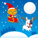 Santa Cat Sleigh stock illustration
