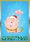 Santa Cat wartet auf Liebe vom Liebling Stockfotos
