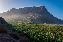 Santa Catalina bay, La Gomera. Santa Catalina bay with banana plantations, La Gomera, Canary islands royalty free stock image