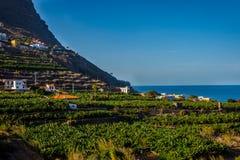 Santa Catalina bay, La Gomera. Santa Catalina bay with banana plantations, La Gomera, Canary islands stock photos