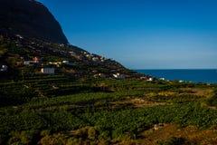 Santa Catalina bay, La Gomera. Santa Catalina bay with banana plantations, La Gomera, Canary islands stock photography
