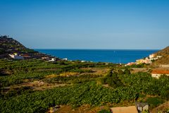 Santa Catalina bay, La Gomera. Santa Catalina bay with banana plantations, La Gomera, Canary islands royalty free stock photos