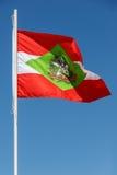 Santa Catarina Flag - Brasilien Fotografering för Bildbyråer