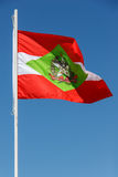 Santa Catarina Flag - Brazil Stock Image