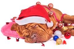 Santa cayó dormido Imágenes de archivo libres de regalías