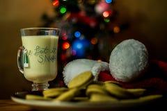Santa ciasteczka Obraz Stock