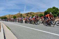 Santa Clarita, Ca De V.S. 18 Mei, 2019 AMGEN-Reis van stadium 7 van Californi? ras door Santa Clarita op de manier aan Pasadena,  stock afbeelding