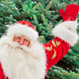 Santa Claus. Portrait of natural Santa Claus standing at Christmas Tree outdoors in winter and welcoming you with open hands royalty free stock photos