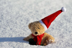 Santa Claus. Teddy as Santa Claus in the nature Stock Images