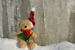 Santa Claus. Teddy as Santa Claus in the nature Royalty Free Stock Image
