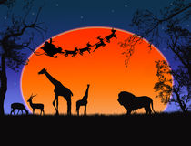 Santa Claus in Africa. Silhouettes of wild animals and flying Santa Royalty Free Stock Photos