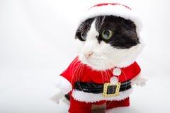 Santa Claus Animal Arkivbilder
