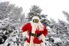 Santa Claus on the background of large Christmas trees in the fo Royalty Free Stock Images