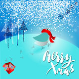 Santa Claus brought a bad gift. Angry bird dissatisfied Christmas gift. A pair of mittens. Christmas lettering. Royalty Free Stock Image