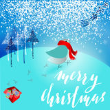 Santa Claus brought a bad gift. Angry bird dissatisfied Christmas gift. A pair of mittens. Christmas lettering. Stock Photos