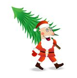 Santa claus carries a green christmas tree Stock Images