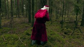Santa Claus che si nasconde dietro l'albero stock footage