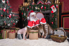 Santa Claus and children opening presents at fireplace. Claus and children opening presents at fireplace. Kids and father in  costume and beard open  gifts Royalty Free Stock Images