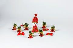 Santa Claus Christmas garneringar Royaltyfri Fotografi