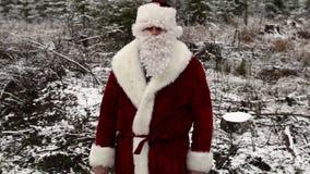 Santa Claus con el pequeño abeto que muestra gestos en el bosque metrajes