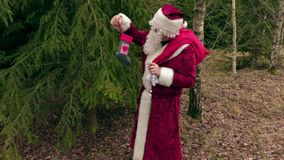 Santa Claus con i regali si avvicina a spruce in foresta archivi video