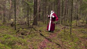 Santa Claus con la borsa del regalo che cammina attraverso la foresta video d archivio