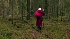 Santa Claus con la borsa del regalo che si allontana nella foresta stock footage