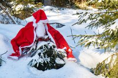 The Santa Claus costume with beards in the winter forest. The Santa Claus costume with beards hangs on the spruce in the winter forest. A small tree in a snowy royalty free stock photos