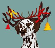 Santa claus dalmatian dog with new year horns with toys,. Christmas tree and bows. Symbol of the year 2018. Vector Stock Photos