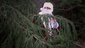 Santa Claus detrás del abeto almacen de metraje de vídeo