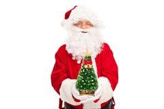 Santa Claus, die einen kleinen Weihnachtsbaum hält Stockbild