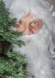 Santa Claus, die hinter einem Weihnachtsbaum sich versteckt Lizenzfreies Stockfoto