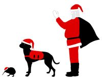 Santa Claus dog and kiwi in christmas clothes Royalty Free Stock Photos