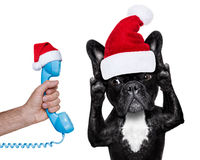 Santa claus dog listening  to the phone Stock Images