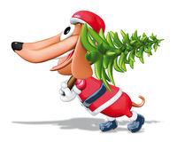 Santa Claus dog and pine Stock Images