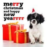 Santa Claus - dog Royalty Free Stock Photography