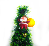 Santa Claus doll against a Christmas tree on white background Royalty Free Stock Image